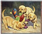 Pedigree Dogs Tapestry Throws by © Bob Christie