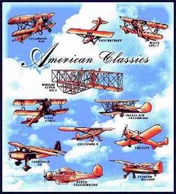 American Classic Planes Tapestry Throw