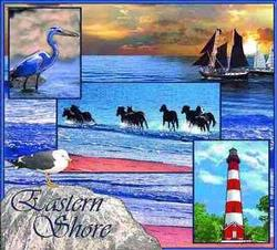Eastern Shore Maryland Tapestry Throw