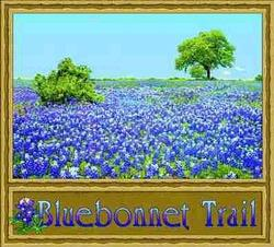 Bluebonnet Trail Tapestry Throw