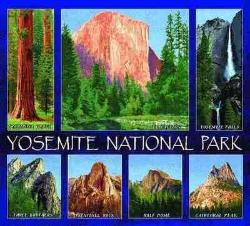 Yosemite National Park Tapestry Throw