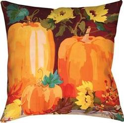 Pumpkins & Sunflowers CLIMAWEAVE Pillows