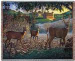 Field Of Dreams Tapestry Throw
