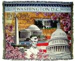 Washington D.C. Tapestry Throw