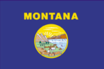 Montana State Flag Tapestry Throw